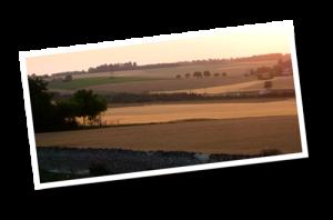 ChateauMotte_landscape06
