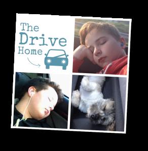 2016_03_19-drive-home