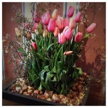 Château de Chenonceau, Chenonceau, France, Castle, Loire Valley, Flower arranging, Floral Design, tulip, tulipe