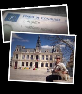 Poitiers, hôtel de ville, Driver's licence