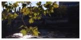 Pont Henri IV, Châtellerault, la Vienne, St. Jacques