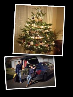 sapin de noël, auchan, Christmas 2016