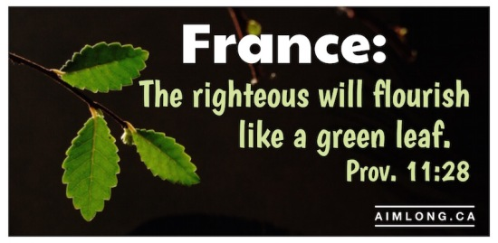 images of France, Pictures of France, Bible Verse, AIMLong.ca, AIMLong, bonsai, tree leaf,