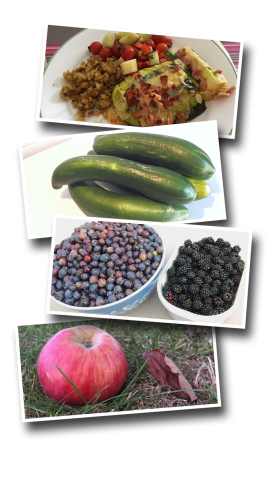 grapes, apples, blackberries, cucumbers, zucchini, harvest, garden