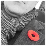 poppy, remembrance day, flanders fields, in flanders fields where poppies blow