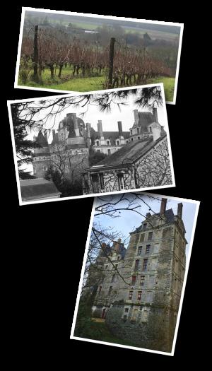 Brissac-Quincé, Brissac Loire Aubance, Maine-et-Loire, Departement 49, vignoble, château