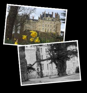 Brissac, Château de Brissac, Brissac Loire Aubance