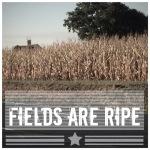 Fields are Ripe!
