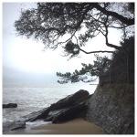 Ocean Therapy amidCorona-Chaos