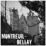 Montreuil-Bellay by Day